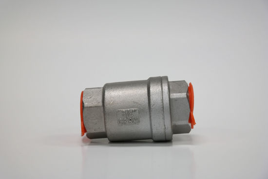 Picture of ESG vertical check valves